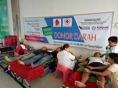"Donor Darah Juli 2016 • <a style=""font-size:0.8em;"" href=""http://www.flickr.com/photos/150945565@N04/32177329481/"" target=""_blank"">View on Flickr</a>"
