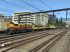 Branchliners in the city! (Matt (thebigman)) Tags: nsw ssr crl sydneytrains 49class waratah aset trackwork