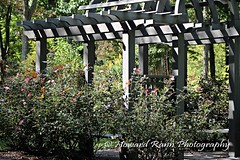 Bamboo Brook Estate Gardens (62) (Framemaker 2014) Tags: bamboo brook estate gardens far hills new jersey somerset county united states america
