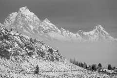 Grand Teton (T.M.Peto) Tags: grandteton nationalelkrefuge wyoming tetonrange tetons snow mountains mountain mountainpeaks snowy trees rocks rockslides crag fog clouds abovetheclouds blackandwhite blackwhite lightroom adobelightroom nikond3300 nikonphotography getoutdoors getoutside outdoor outdoors outdoorphotography landscape landscapephotography scenicsnotjustlandscapes monochrome scenic scenery godscreation mountainside inversion