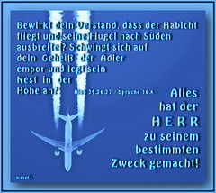 Gott hats gemacht / God has done it (Martin Volpert) Tags: airplane christ god faith lord bible christianity bibbia herr scripture jumbojet jetplane scriptures biblia gott holyspirit glaube bijbel glauben christentum bibleverses jesuschristus heiligergeist bibelverskarte mavo43 lovetruth powershotsx50 dsenfllugzeug