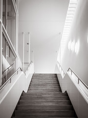 staircase (grizzleur) Tags: bw lines stairs mono perspective staircase straight toning olympusomdem5 olympusm17mmf18