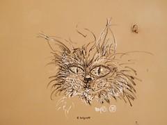 Graff in Grenoble (brigraff) Tags: streetart cat grenoble chat drawing panasonic gato katze arepo tz60 panasonictz60 brigraff
