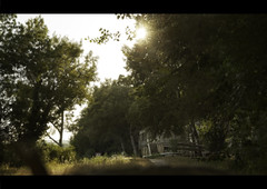 Old country (Sbastien Huette) Tags: sun home landscape soleil coucher paca paysage maison avignon extrieur arbre fort coucherdesoleil bosquet cano