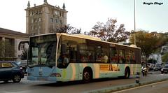 Los cantabros prestan servicio en Cantabria... (sergiodiego95) Tags: mercedes urbano autobus tus santander espaol estaciones citaro samano piquio barriopesquero