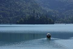 Lake Bled (halukderinöz) Tags: lake bled slovenia blue göl ada kayık sandal boat canoneos40d eos40d hd kilise church orman forrest alpine dalga wave tranquility huzur pletna
