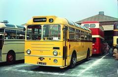 A long way from home. (Renown) Tags: bus singledecker leyland royaltiger burlingham nlj272 preserved restored pops rally pmt cloughstreet hanley stokeontrent