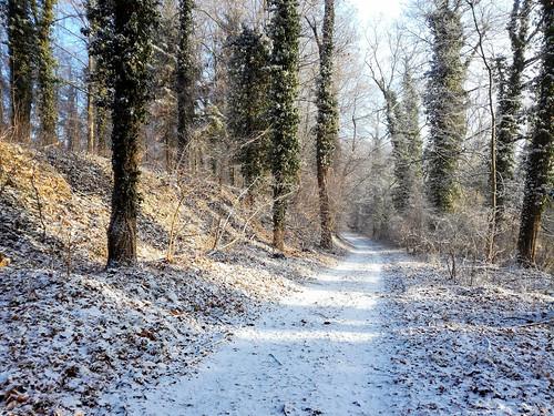 Mein Bruchsaler Hügelland im Schnee