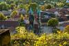 Ein Blick auf Freyburg/Unstrut (berndtolksdorf1) Tags: deutschland sachsenanhalt burgenlandkreis kirche stadtansicht herbst jahreszeiten weinberg sonneenlicht