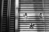 Gang of Three (gheckels) Tags: streetphotography singaporestreetphotography heckelsphotography street urban 3 three triangle candid sonya7rii sonyimages carlzeiss blackwhite bw monochrome singapore aerial