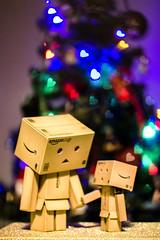 Danbos at Christmas (ClaireShepley) Tags: bokeh heart danbo danboard christmas lights heartbokeh