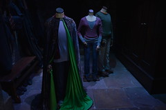 DSC_0374 (SherryFlox) Tags: wonderful wand harrypotter wizard dumbledore snape hermione gryffindor ron voldemort tour warnerbros london kingscross amazing gorgeous christmas