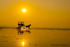 Chariot of Heaven (rahulboraste) Tags: rahulborastephotography silhouette beach sea horse india kokan