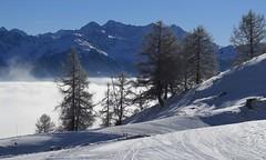 Ovronnaz (bulbocode909) Tags: valais suisse ovronnaz montagnes nature arbres mélèzes neige hiver brume stratus bleu paysages