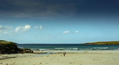 Companion - Narin Beach -#13 (sundar_5050) Tags: sundar nikon d7100 narin donegal ireland 2017