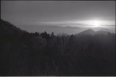 (✞bens▲n) Tags: pentax lx fa 31mm f18 limited film blackandwhite neopa 400 japan nagano sunset evening mountains sun light tree trees