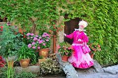 Parade venitienne Chanaz 2015 (jomnager) Tags: costume nikon passion savoie f28 afs masque 1755 chanaz d300s carnavalvenitien