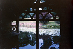 Warwick Castle Boathouse (Jae at Wits End) Tags: door wood uk england plant reflection building tree green english window nature water field grass silhouette architecture backlight yard rural creek river garden landscape mirror pond woods stream europe view ditch natural unitedkingdom interior country lawn scenic entrance indoor structure doorway shade opening british inside brook lillies portal form backlit outline shelter shape boathouse picturesque warwick grounds turf entry sod trickle