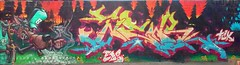 bear speek,tck,eds,,,,,tarancon2015 (speekone tck. eds) Tags: