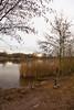 IMG_1080-Edit (brianfagan) Tags: 7d brianfagan ursula canon country eos nottingham nottinghamshire park rushcliffe uk ruddington england unitedkingdom