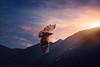 featherweight (Chrisnaton) Tags: southtyrol eagle flying sundown sunset mountains eveningmood eveninglight eveningcolors eveningsky bird nature accipitridae