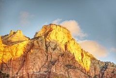Head in the Clouds (Herculeus.) Tags: 2016 beehives bouldersstonerocks cliffs clouds country cumulusclouds6kfeet day erosion evergreens fall gold landscape landscapes mountains oct outdoor outdoors outside sun trees ut zionnp utah usa rock rockformation mountain