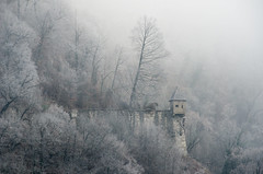MOO_8315 (T_Sted) Tags: salzburg austria christmas winter fortress castle fortified watchtower trees nature forest