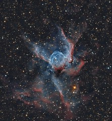 Thors Helmet - NGC 2359 (Paddy Gilliland @ Image The Universe) Tags: thor helmet thorshelmet ngc2359 ngc ic space nebula nebulae stars night astro astronomy astrophoto astrophotography ap lrgb rgb hubble cosmos texture abstract outdoor wide widefield nighttime sky dark colours astrometrydotnet:id=nova1925838 astrometrydotnet:status=solved