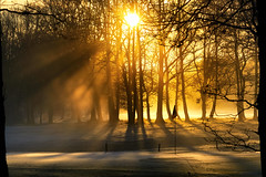 Ashridge Golf Club (paulinuk99999 (lback to photography at last!)) Tags: paulinuk99999 ash ridge golf club early morning sunrise frost december 2016 winter buckinghamshire ringshall sal70400g explore