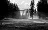 Morning Fog (RedHatGal: Barbara Butler/FireCreek Photography) Tags: yosemitenationalpark ca meadow fog pinetrees mountain morning valley mist outdoor landscape barbarabutlerphotography firecreekphotography redhatgal