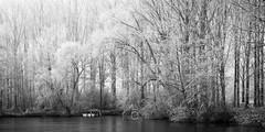 Hydrométéore hivernal XII (CrËOS Photographie) Tags: nature eau water lac lake arbres tress boat barque givre frost gelé frozen winter hiver landscape paysage brouillard fog