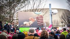 2017.01.21 Women's March Washington, DC USA 00106