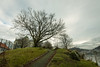 Tree on top II (*JRFoto*) Tags: jrfoto d750 nikon 2470 28 cs4 lightroom bergen norway europe trees grass clouds old cool buildings background i belive its school laksevåg distance lovely spring day by