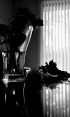 And she waited - 她就等著 (sunflowers&bubbletea) Tags: blackandwhite bw plant flower rose petals vase dried arrangement 黑白 花朵 薔薇 玫瑰 黑白照 wiltedflowers wiltedrose 花瓣 花瓶 枯萎 nikond90 乾花 sunflowersbubbletea