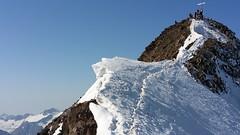 hiking is cool (potosi6088m) Tags: schnee holiday snow tirol reisen travels urlaub hike summit ferien wandern glaciertour mountainhike gipfel bergwanderung summitridge gletschertour gipfelgrat