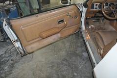 "1979 Pontiac Firebird • <a style=""font-size:0.8em;"" href=""http://www.flickr.com/photos/85572005@N00/19299340722/"" target=""_blank"">View on Flickr</a>"