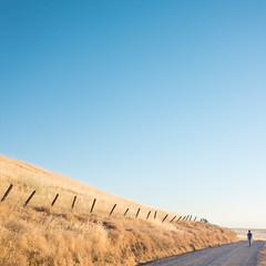 Day 733 [6/22/15]: Forward Pt. 1/2 (Buuck Photography) Tags: california road travel blue summer vacation orange selfportrait man male guy northerncalifornia yellow rural standing fence square landscape lost leaving person photography one 1 golden countryside weeds alone quiet peace dailypic hill nowhere photojournalism dry dude dreaming wanderlust adventure explore dirt abandon norcal fascination minimalism walkingaway stillness wandering dailyphoto enchantment gravel longing lookingaway searching selfie photooftheday oroville sacramentovalley emptyspace buttecounty blankspace project365 facingaway photoadaychallenge thermalito letsgosomewhere nelsonave vscofilm buuckphotos buuckphotography michaelbuuck shotonsonyrx100