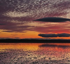 Northumberland Sunset (Chris Beesley) Tags: