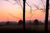 Hide & Seek (D.ROS) Tags: 2016 black blue bush course dark dousberg field fog geul golf grass green haze light limburg maastricht magenta mist netherlands orange outdoor red sky sun sunset tree valkenburg white winter yellow