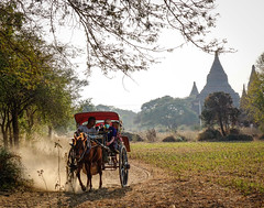Horse cart carrying tourists on dusty road (phuong.sg@gmail.com) Tags: archeology architecture art asia asian attraction bagan buddhism buddhist burma burmese carriage cart culture dirt exploring heritage horse landmark myanmar pagoda religion religious revered road serene sightseeing southeast stupas temple theravada tour tourism tourist tourists tradition traditional tranquil travel wagon worship