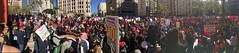 Women's March Panorama (Kevin MG) Tags: womensmarch losangeles streetphotography street protest demonstrations antitrump equality genderequality