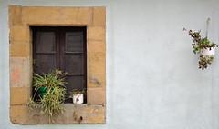 macetas __ flower-pots (Roger S 09) Tags: asturias cabranes santolaya santaeulalia pared wall ventana window macetas flores flowerpots flowers