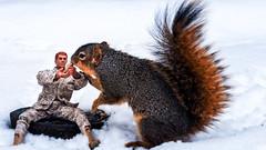 Chow Time (Billy Woolfolk) Tags: olympus omd em1 m43 mft microfourthirds gijoe toys squirrel ann arbor umich university michigan オリンパス リス ピーナツ アナーバー ミシガン州 玩具 人形 giジョー フィギュアー flickraward5 universityofmichigan