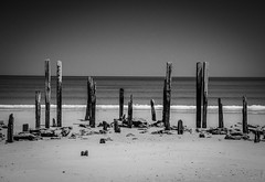 Weathered by the Sea (Trav H) Tags: adelaide aged beach decay peir portwillunga southaustralia timber