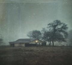 left the light on (jssteak) Tags: canon t1i rural fog barn tree light aged vintage grunge texas winter