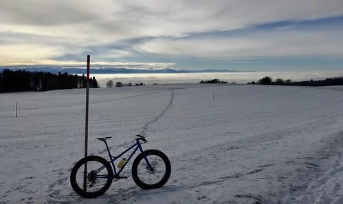 Crossing The Twannberg