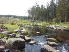11225252_10153828612580815_8102594724259762834_n (hollyfreyja) Tags: dartmoorr monolithic pentax k50 nature devon england hiking moorland wilderness tors dartmoor national park river bellever forest