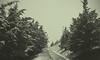 Carretera y nieve (Fermin Pagola) Tags: nieve carretera árboles sancristóbal ezkaba navarra