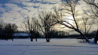 170102-05 Beauté hivernale
