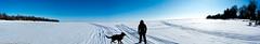 DSC_2270-Pano-2 (michael.petryk) Tags: brendakuschak lakewinnipeg winnipegbeach ice snow winter